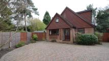 4 bed Detached home in Andrews Close