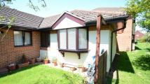Bungalow to rent in Blue Pryor Court