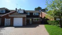 4 bedroom Detached house in Frensham Avenue