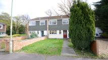 Terraced house to rent in Wickham Road