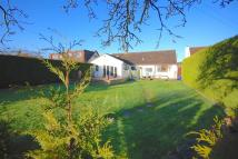 4 bed Chalet in The Willows Coxley Wick ...