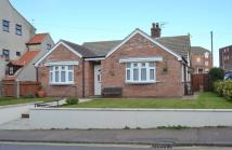 Detached Bungalow to rent in Cliff Road, Sheringham