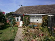 Semi-Detached Bungalow to rent in Sapwell Close, Aylsham...