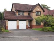 Detached house in Brierie Hill Road...