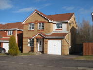 BRUEACRE DRIVE new house to rent