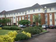 Studio apartment in Walsingham Close...