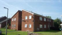 1 bed Studio apartment to rent in Westbury Way, Saltney...