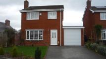 Detached property to rent in Smithy Close, Chester...