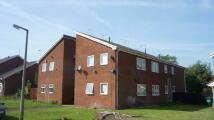 Studio apartment to rent in Westbury Way, Chester...