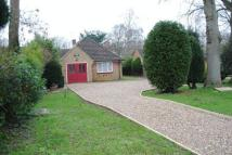3 bedroom Detached Bungalow for sale in Tollers Lane...