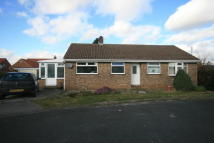 Bungalow in Meadow Court, Rillington...