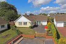 Detached Bungalow in Taunton