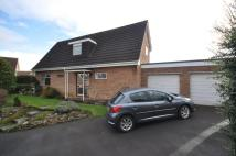 Detached home in Lodge Close, Taunton