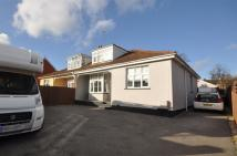 Semi-Detached Bungalow for sale in Wellington Road, Taunton