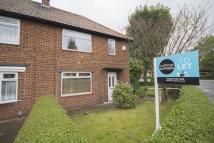 semi detached house to rent in Normanby Road...