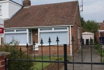 Premier Road Bungalow to rent