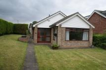 3 bedroom Bungalow to rent in Aldwych Close...