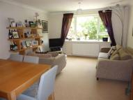 Apartment to rent in AVAILABLE 1 SEPTEMBER 2...