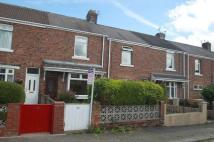 2 bed Terraced property to rent in Albion Avenue, Shildon...