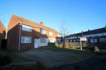 semi detached house to rent in Dorset Road, Norton...