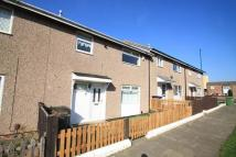 3 bed Terraced property to rent in Mitford Close, Ormesby...