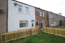 Gloucester Street Terraced property to rent