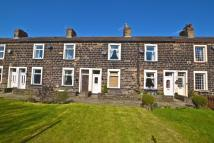 2 bed Terraced house in Ivy Street, Colne, BB8
