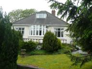 Detached Bungalow in Bryneglwys Avenue...