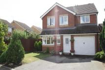 4 bedroom Detached property in Cypress Close
