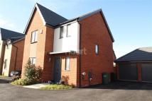 3 bed Detached house to rent in Coriander Drive
