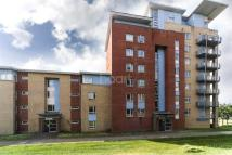 Forty Lane Flat to rent