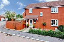 3 bedroom semi detached house in Bramley Close, Wellington