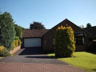 Bungalow for sale in Holmewood Drive...