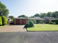 4 bed Detached Bungalow in Fatfield Park...