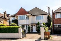 7 bed Detached property in Chatsworth Road...