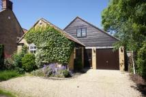 Detached house to rent in Cape Barn, Back Street...