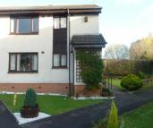 2 bed Flat to rent in Holly Grove,  Bellshill...