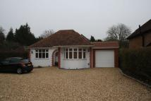 Bungalow in Frog Grove Lane...