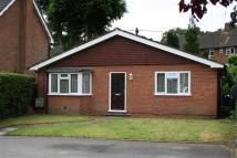 3 bed Bungalow to rent in Portsmouth Road, Milford