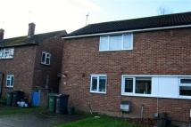 House Share in Pond Meadow, Guildford