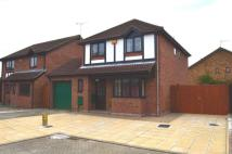 4 bed home to rent in Patterdale Drive...