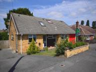 4 bed Detached Bungalow to rent in Dickens Close, Langley...