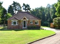 2 bedroom Bungalow to rent in Ambarrow Lane, Sandhurst...