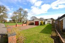 3 bed Bungalow in Bletchley