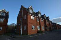 Apartment to rent in New Bradwell
