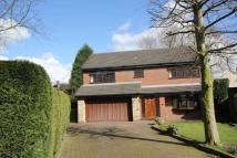 Detached home in Ralphs Lane, Dukinfield