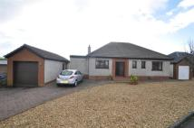 3 bed Detached Bungalow in 3 Ardneil Avenue...