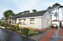 Semi-Detached Bungalow in 32 Castlepark Gardens...