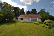 Detached Bungalow for sale in 14 Geirston Road...