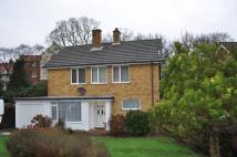Detached property to rent in Millbrook Road...